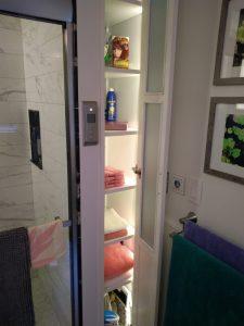 Primary Bath Lighted Closet